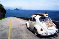 VW_Volkswagen_Volksrods_Bugs_and_Beetles_1105