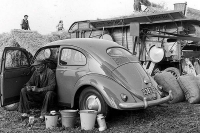 VW_Volkswagen_Volksrods_Bugs_and_Beetles_1110