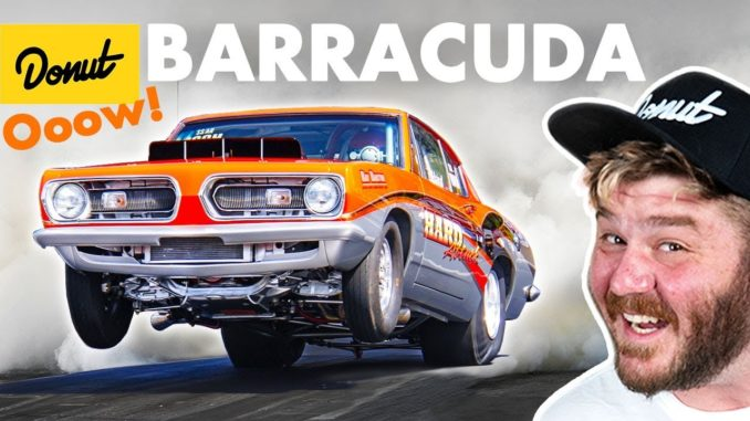 Barracuda ~ Everything You Need To Know