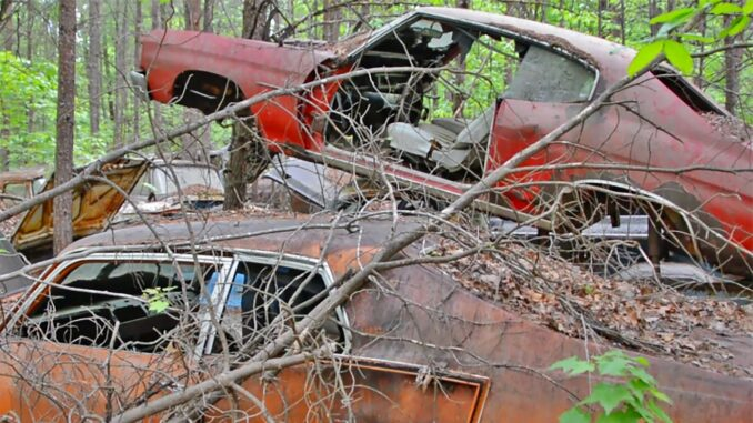 Junkyard Tour of Tellico Mountain Motors in East Tennessee